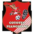 Coyotes Piangipane